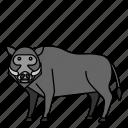 animal, boar, mammals, pork, wild icon
