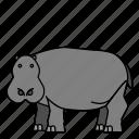 animal, hippopotamus, mammals, wild, zoo icon