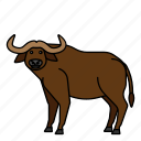 animal, buffalo, bull, mammals, wild icon