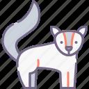 animal, artic, fox icon