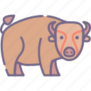 bison, buffalo, bull icon