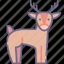 animal, deer icon