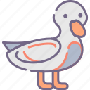 animal, bird, duck icon