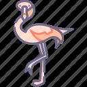 animal, bird, flamingo icon