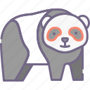 bear, giant, panda icon