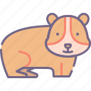 animal, guinea, pig icon