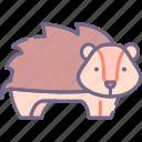 animal, hedgehog