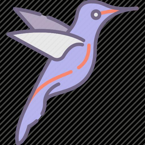 Bird, hummingbird icon - Download on Iconfinder