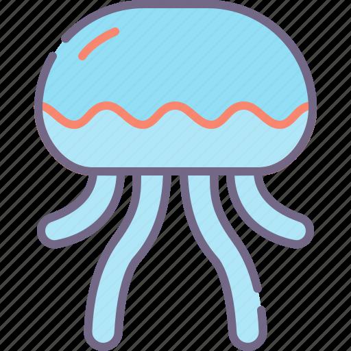 Jellyfish, medusa, sea icon - Download on Iconfinder