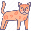 big, cat, leopard icon