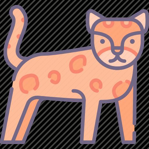 big, cat, leopard icon