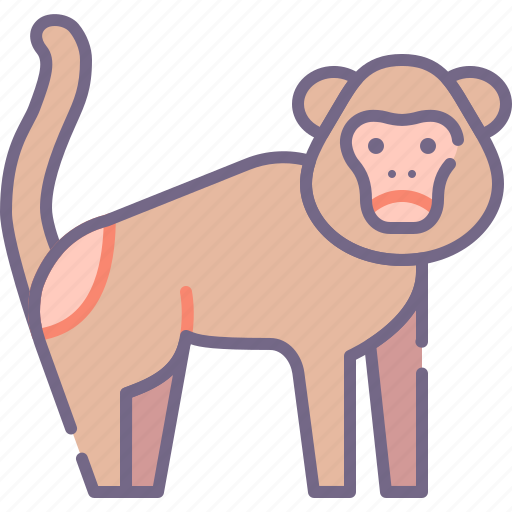 Ape, monkey, nature icon - Download on Iconfinder