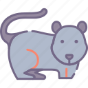 mouse, rodent icon