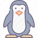 bird, penguin, zoo