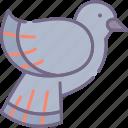 brid, park, pigeon icon