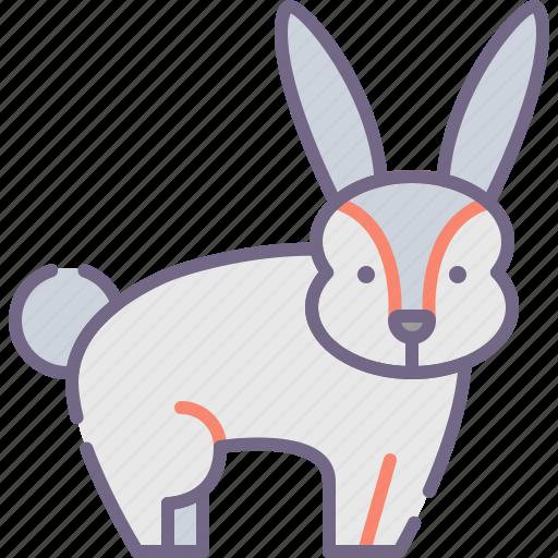 animal, bunny, easter, rabbit icon