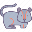rat, rodent icon