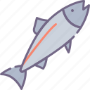 fish, salmon icon