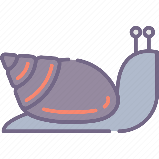 Shell, slow, snail icon - Download on Iconfinder