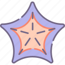 sea, starfish icon