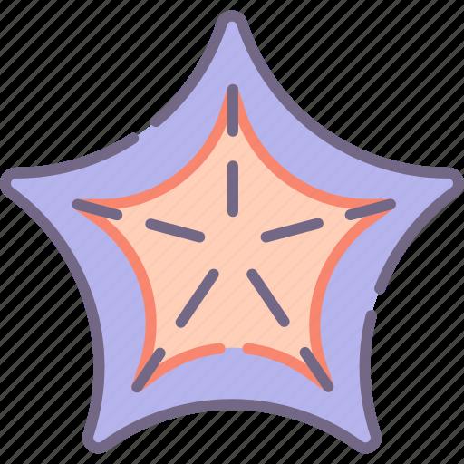 Sea, starfish icon - Download on Iconfinder on Iconfinder