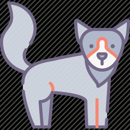 animal, wolf icon