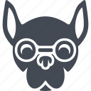 animals hipsters, animals, hipsters, dog icon