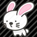 1f407, rabbit