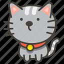 b, cat, 1f408