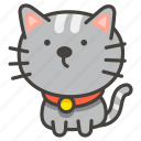 b, cat, 1f408 icon
