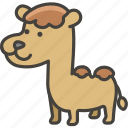 1f42b, camel, hump, two icon