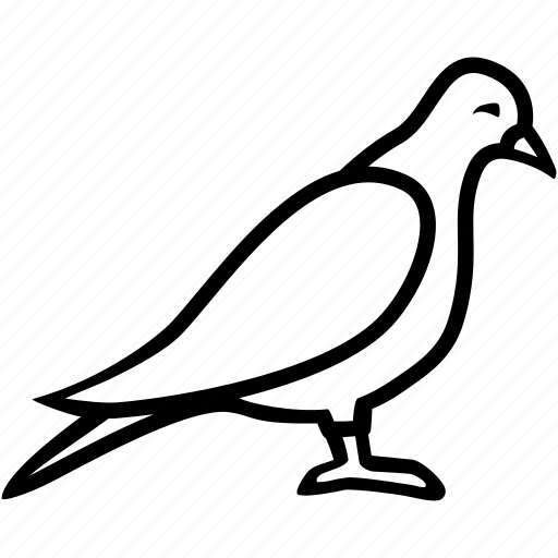 air, bird, dove, fly, pigeon icon