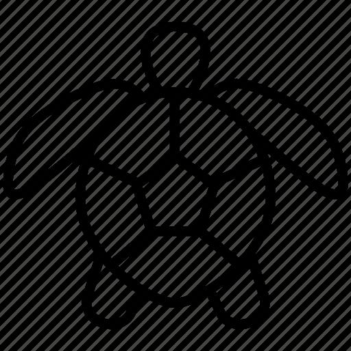 reptile, sea, shell, tortoise, turtle icon