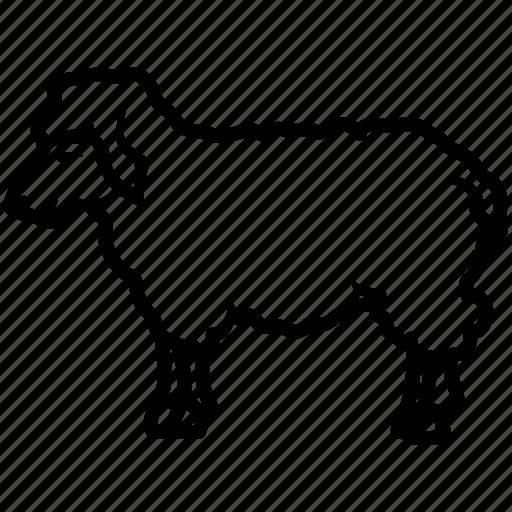 ewe, lamb, ram, sheep, wool icon
