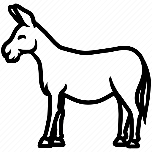 Jack ass illustration