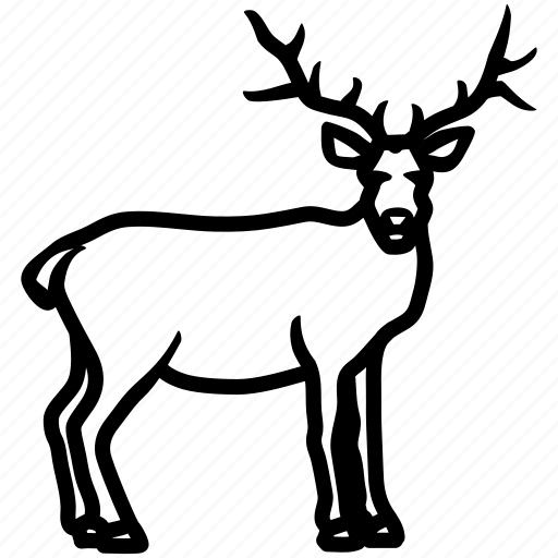 deer, elk, mammal, moose, sylvan icon