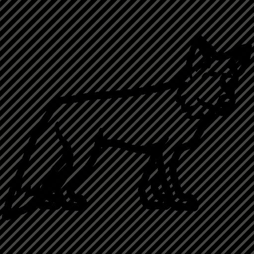 carnivore, fox, jackal, predator, wolve icon