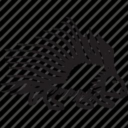 porcupine, rodent, spine, wild icon