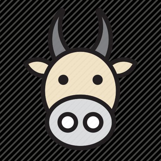 animal, cow, face, india icon