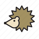 animal, hedgehog, pet icon