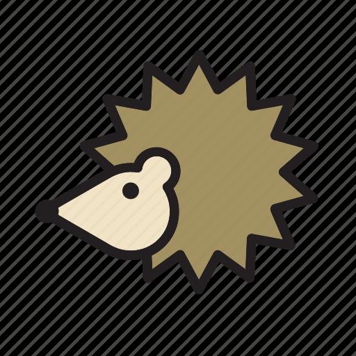 animal, hedgehog, pet icon