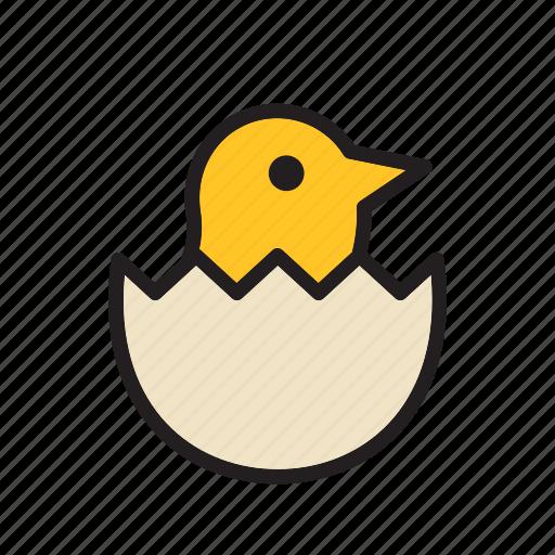 animal, bird, chick, egg icon