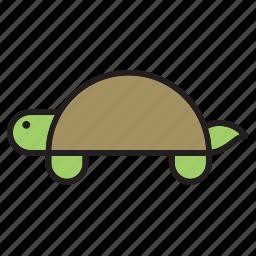 animal, pet, reptile, terrapin, tortoise, turtle icon