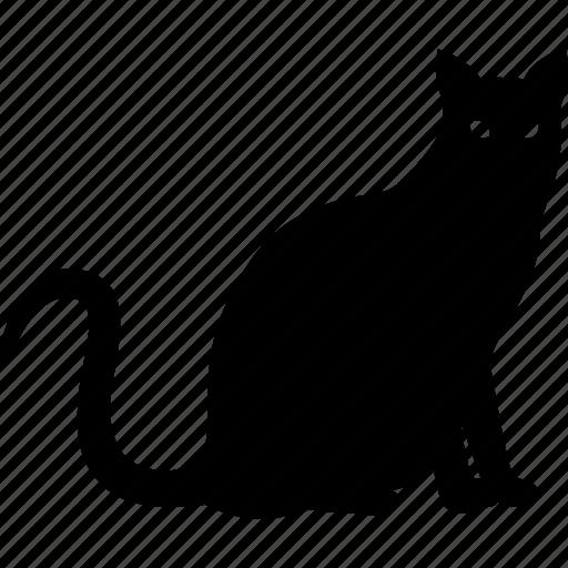 animal, cat, feline, pet, pussy, silhouette, tabby icon