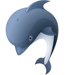 animal, dolphin icon