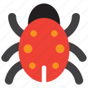 virus, beetle, bug, insect
