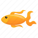 water, nature, texture, pattern, goldfish icon