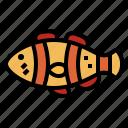 animal, aquarium, clownfish, ocean icon