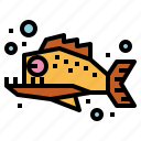 animal, dangerous, fish, piranha icon