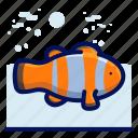 animals, aquatic, clown, fish, nautical, ocean, wildlife